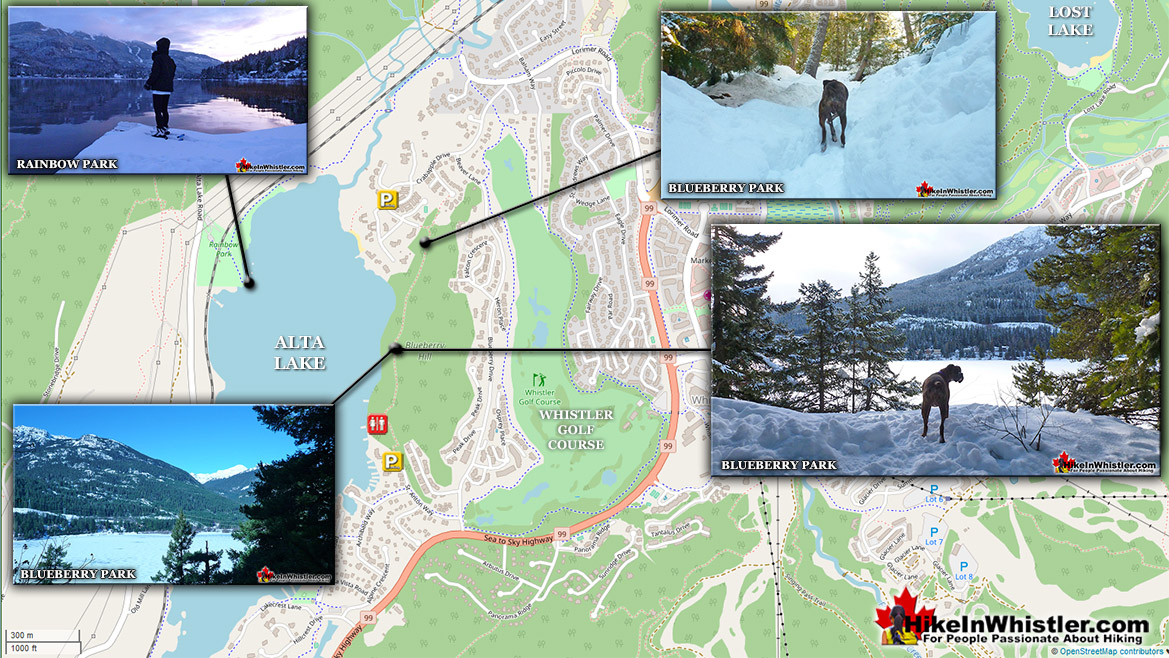 Blueberry Park Snowshoeing Map