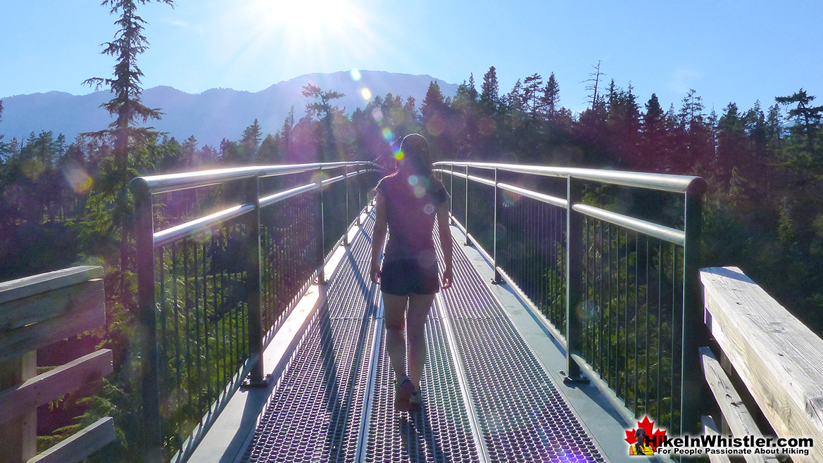 Bungee Bridge Above Cheakamus River