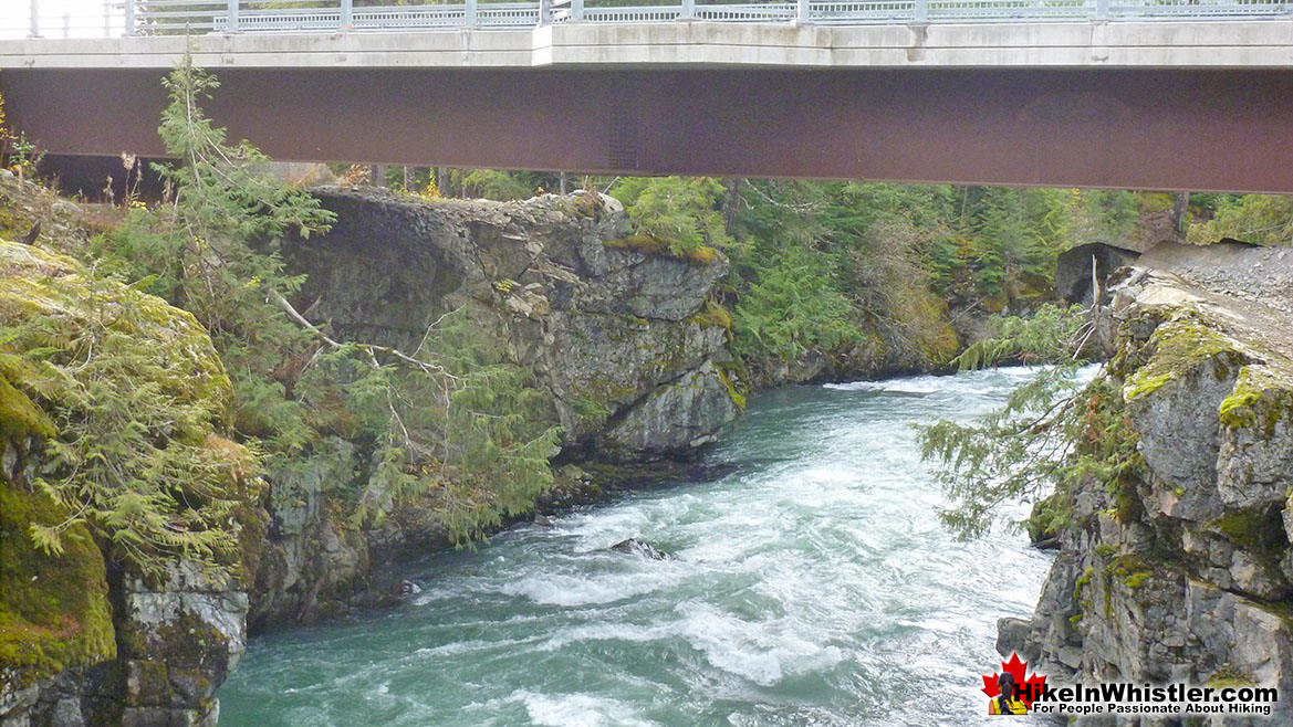 The Cheakamus Crossing Bridge