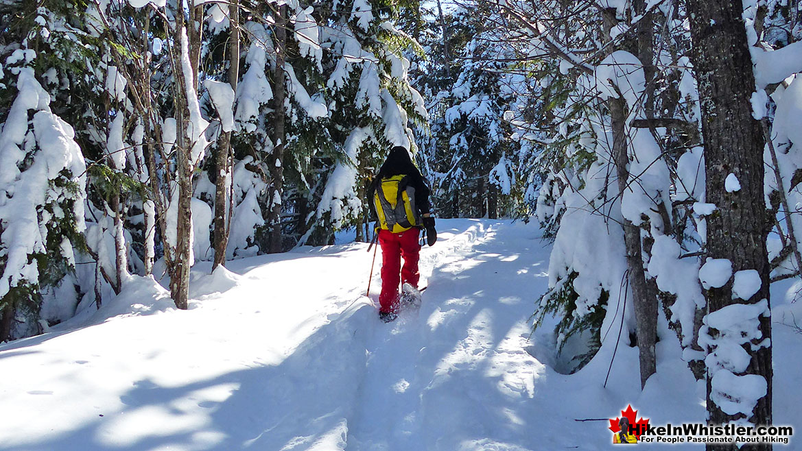 Snowshoeing the Flank Trail