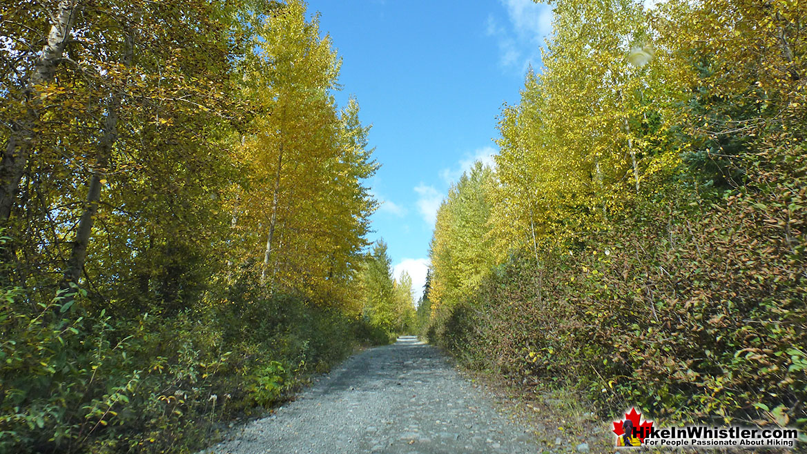The Flank Trail is a Gravel Road near Northair Mine