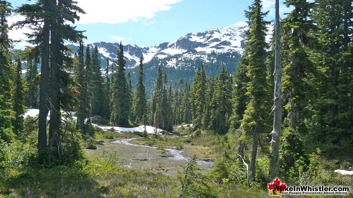 Ring Lake Trail Hike in Whistler