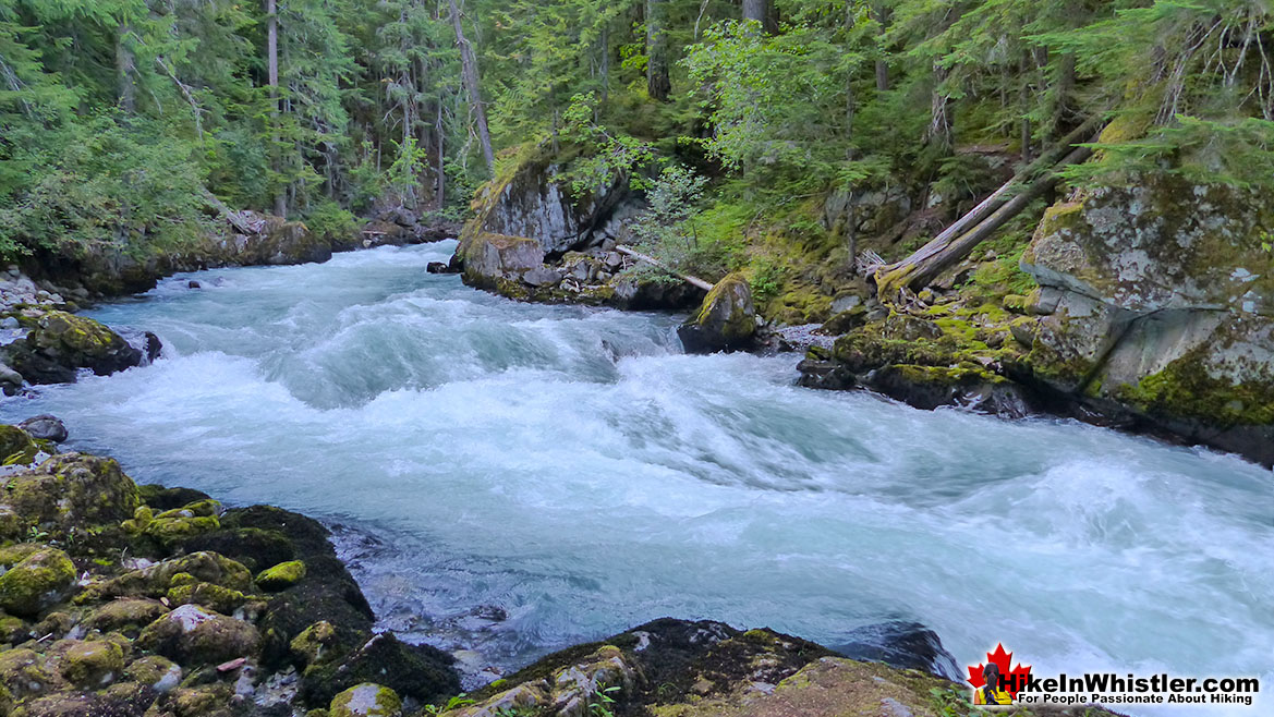 Cheakamus River Hike in Whistler