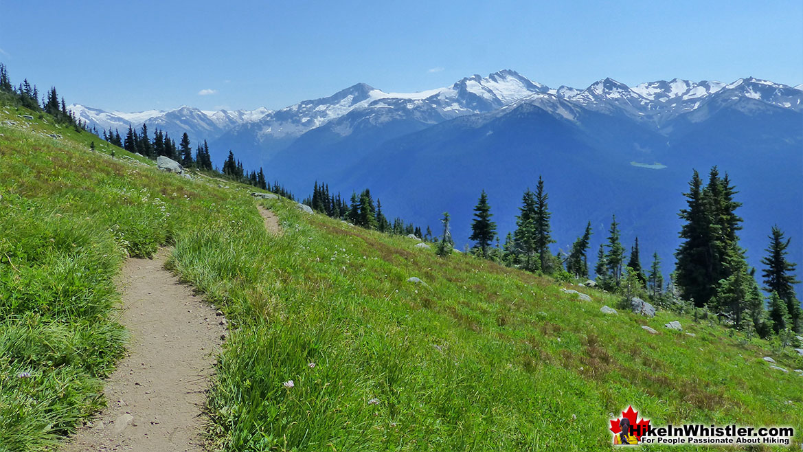 Whistler Mountain High Note Trail